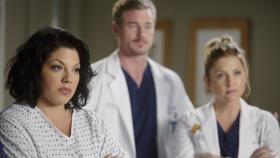 Stehen vor einer neuen Herausforderung: Callie (Sara Ramirez, l.), Mark (Eric Dane, M.) und Arizona (Jessica Capshaw, r.) ...  ABC Studios